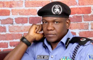 Reform: We'll beat our personnel into line –Police
