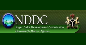 Buhari orders probe of NDDC, says investment in S'South not justified