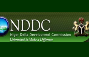 Buhari appoints Acting MD for NDDC
