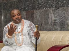 Otuaro: Consumate scholar and stentorian voice in N'Delta struggle