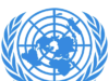 UN and a growing campaign of calumny against Nigeria and Africa