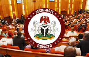 Senate passes 2020 Appropriation Bill, raises budget to N10.594trn