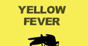 Yellow fever: Katsina to immunise 7m residents